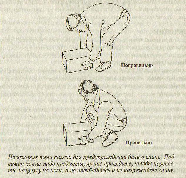паразиты человека книга скачать